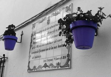 Signage purple planter